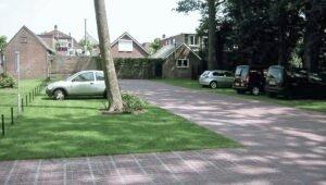 AS-TTE ochrana stromov